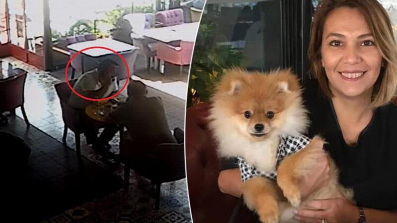 Eski ortağı köpeğini alıkoydu, almaya gidince kendisine komplo kurulduğunu iddia etti
