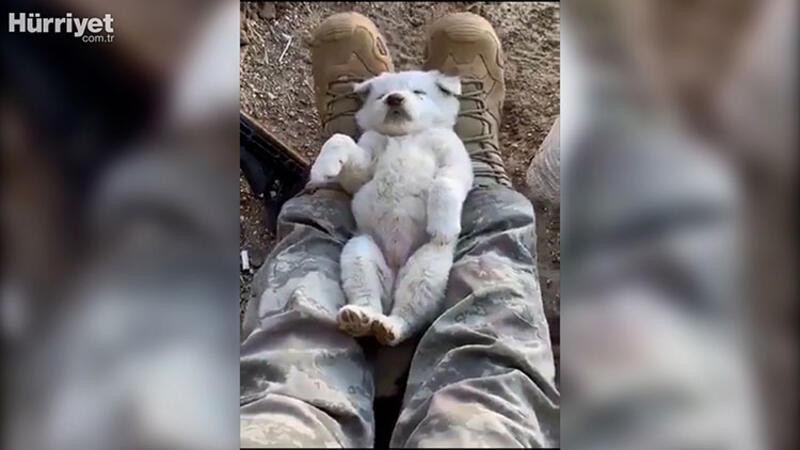 Jandarma TEM Daire Başkanı paylaştı: 'Jandarmanın botları; düşmana korku, dostuna yastık olur'