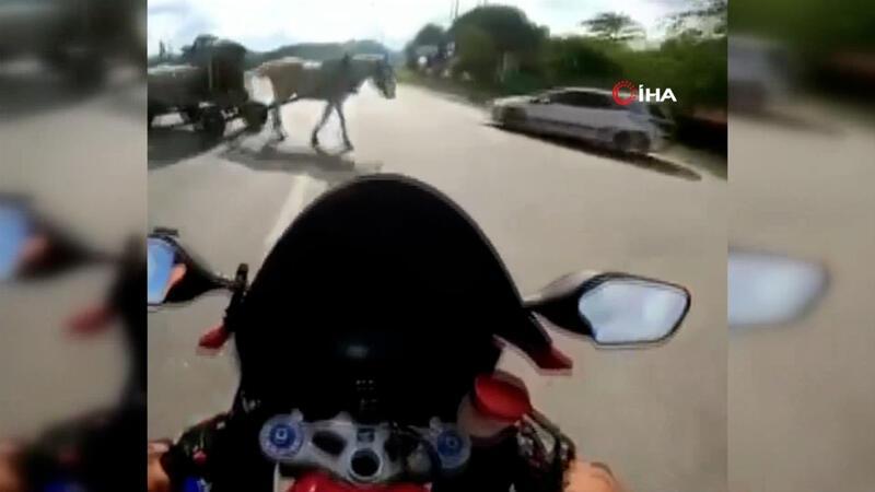 Şile Otoyolu'nda feci kaza! Motosiklet sürücüsü ata çarptı