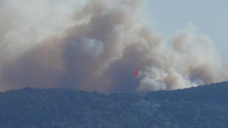 Son dakika... İstanbul Heybeliada'da orman yangını