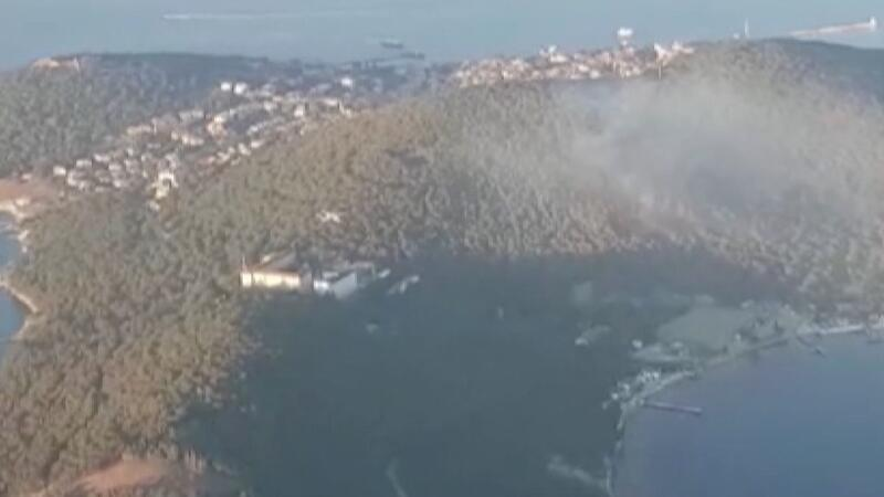 Three detained over Heybeliada forest fire