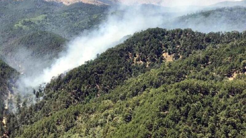 Son dakika... Isparta'da orman yangını