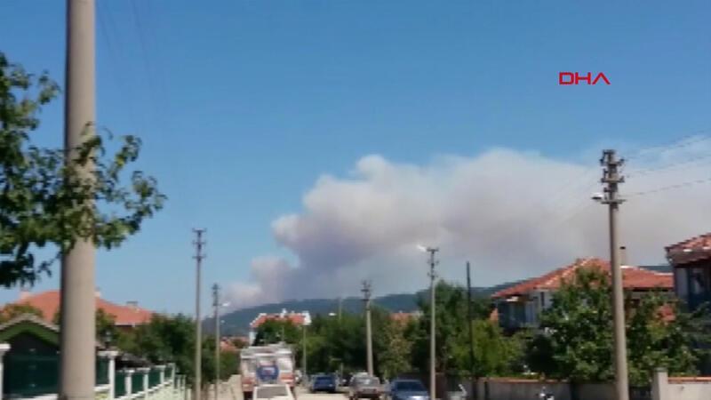 Son dakika... Çanakkale'nin Yenice ilçesinde orman yangını çıktı