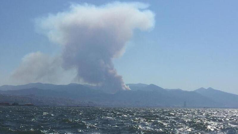Son dakika haberi: İzmir'de orman yangını paniği