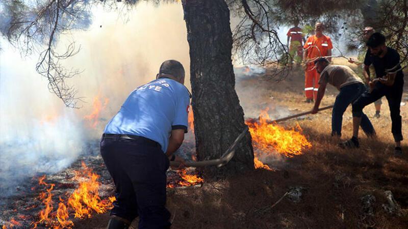Son dakika haber... Gaziantep'te orman yangını