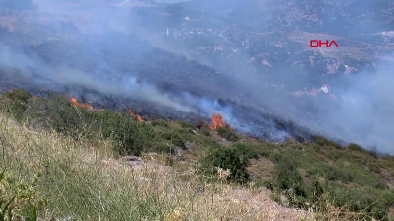 Son dakika... İzmir Bornova'da otluk ve makilik alanda yangın