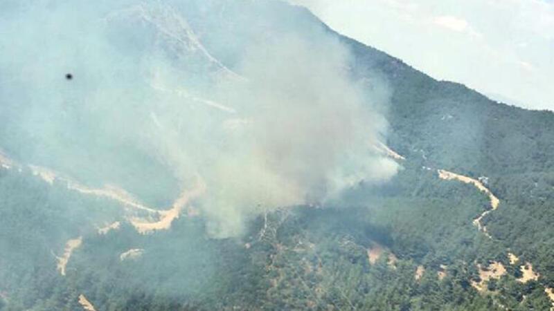 İzmir'de ağaçlandırma sahasında yangın