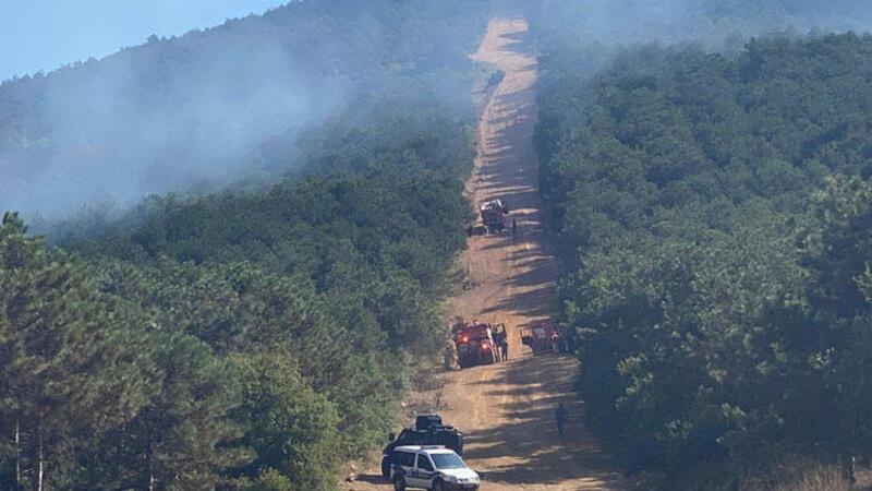 İstanbul Maltepe'de ormanlık alanda yangın