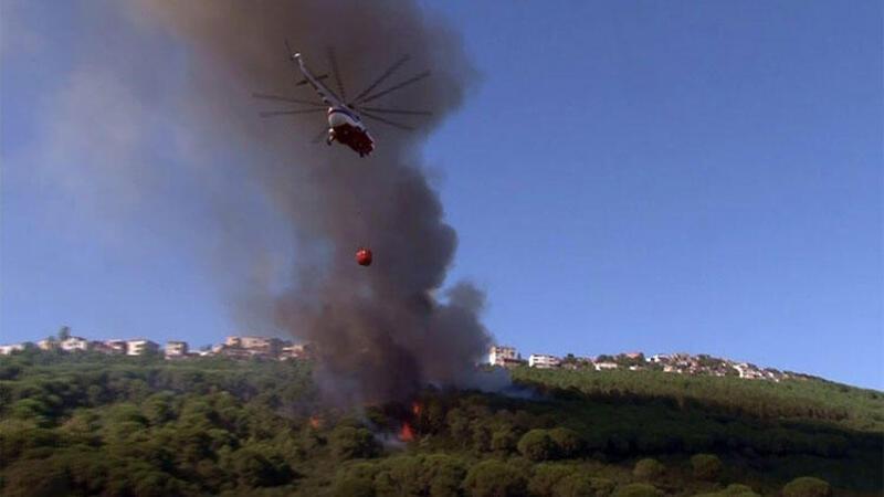 Son dakika! Maltepe'de ormanlık alanda yangın çıktı
