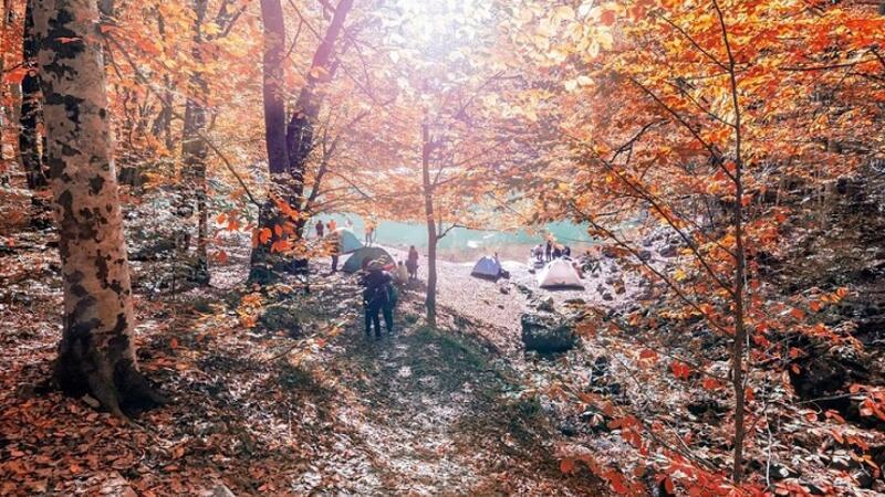 Sonbaharın huzur adresi: Yedigöller Milli Parkı