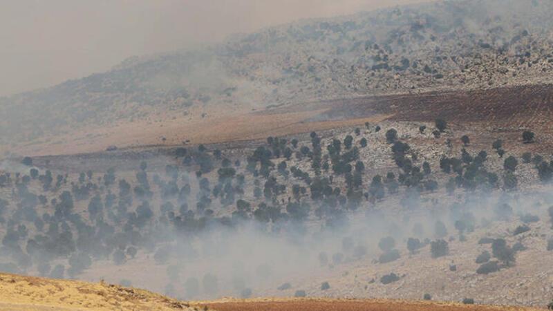 Adıyaman'da orman yangını kontrol altına alındı