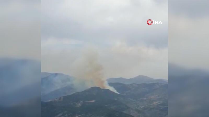 Son dakika... Osmaniye'nin Düziçi ilçesinde orman yangını çıktı