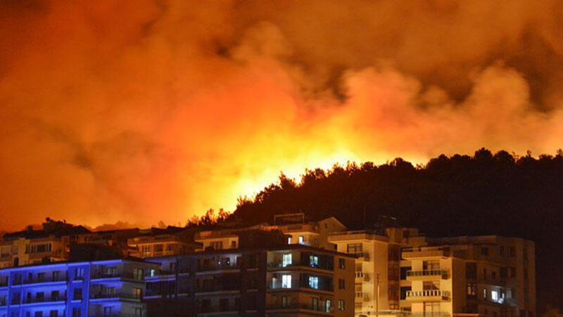 İzmir'in Dikili ilçesinde zeytinlik ve çamlık alanda yangın çıktı