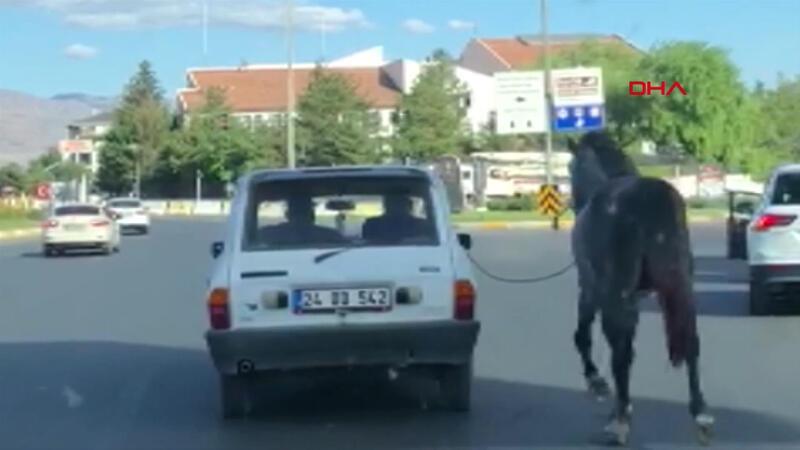 Tepki çeken görüntü! Otomobile bağladıkları atı kilometrelerce koşturdular