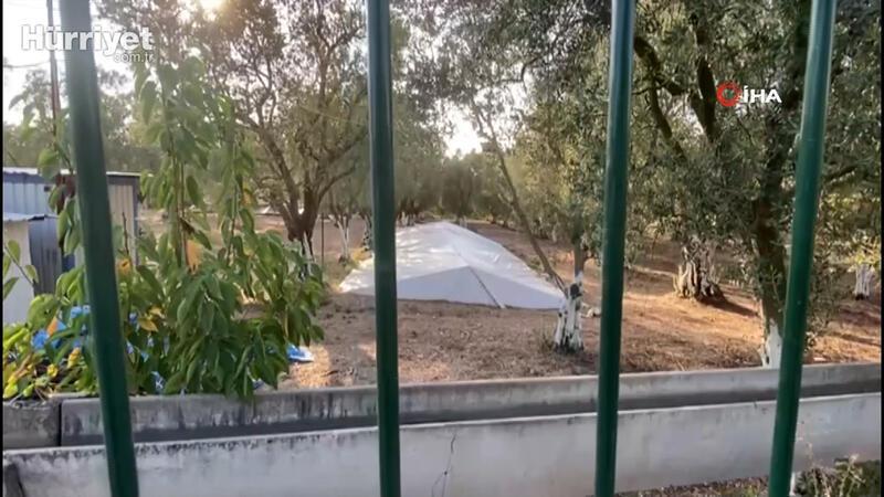 Bursa'da zeytin tarlasında toplu mezar anlamına gelen Çatkı Mezar bulundu