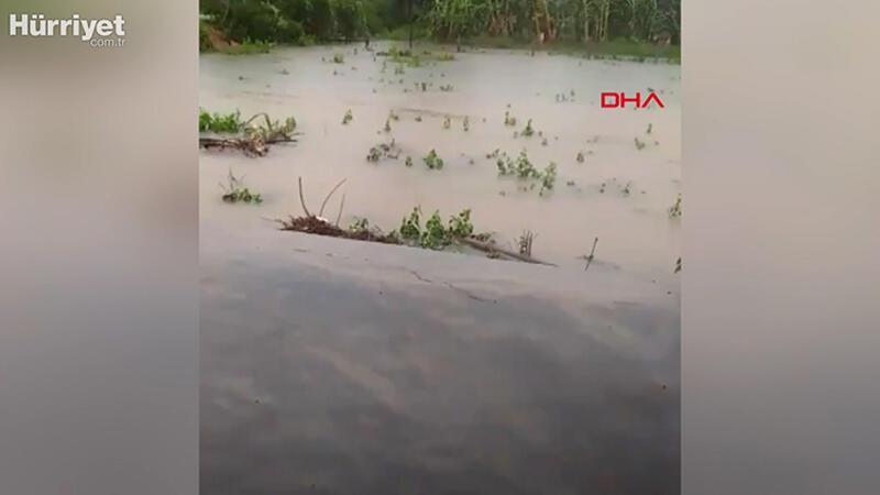 Vietnam'da sel felaketi: Çok sayıda ölü var