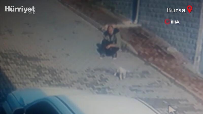 Köpeği önce sevdi, sonra kaçırdı! O anlar kamerada