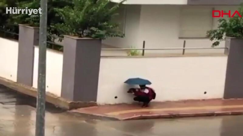 Antalya'da yürekleri ısıtan görüntü... Şemsiyesiyle sokak köpeğini yağmurdan korudu