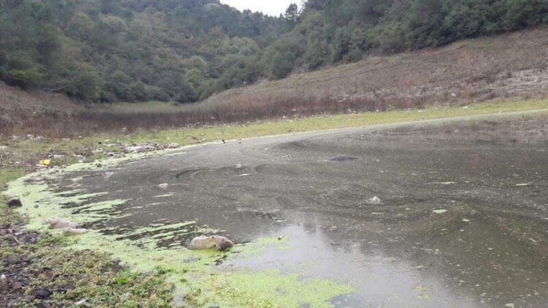 Doluluğu yüzde 29'a düşen İstanbul barajlarında 'dip suyu' tehlikesi