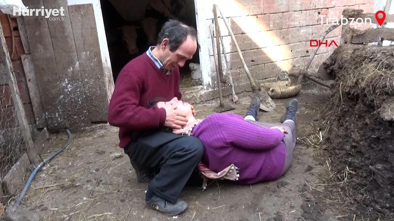 Telef olan inekleri için gözyaşı dökerken bayıldı