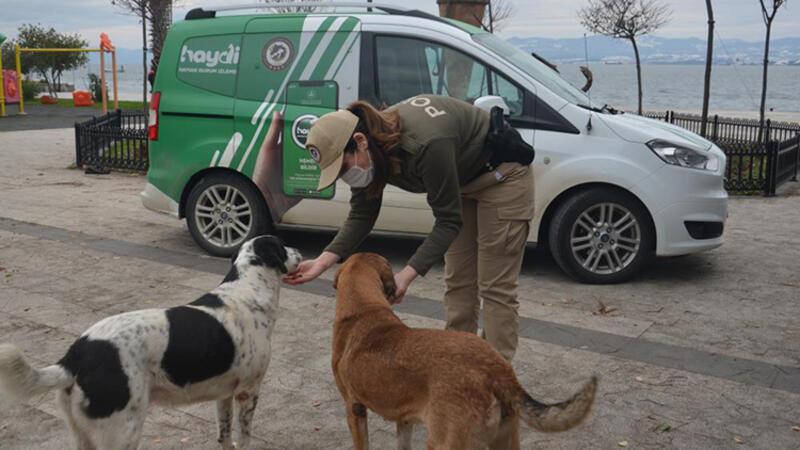Sinop polisinden can dostlara yiyecek yardımı