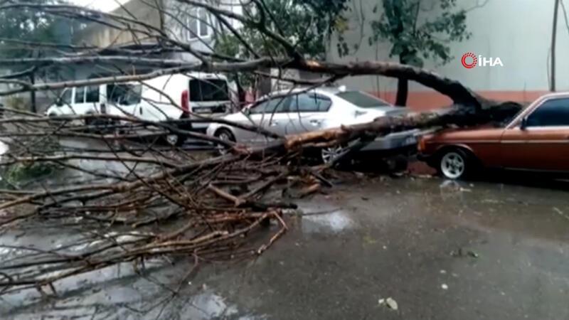 Antalya'yı sağanak ve fırtına vurdu; ağaçlar yıkıldı, araçlar suda mahsur kaldı
