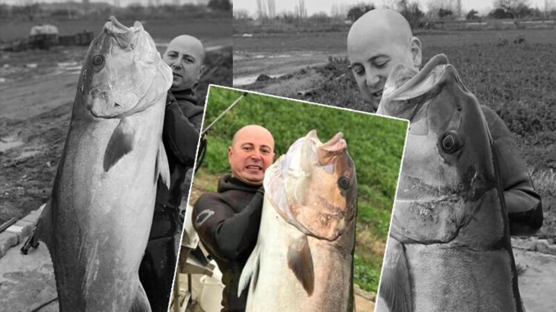 Zıpkınla Akya balığı avladı
