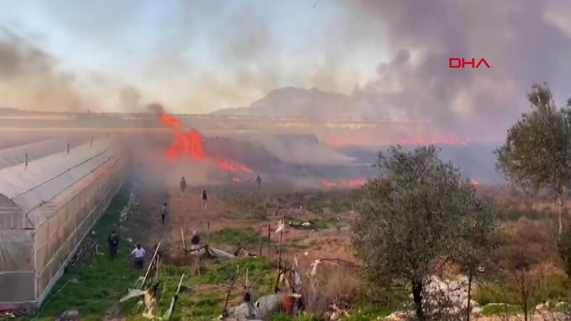 Antalya'da sazlık alanda yangın çıktı