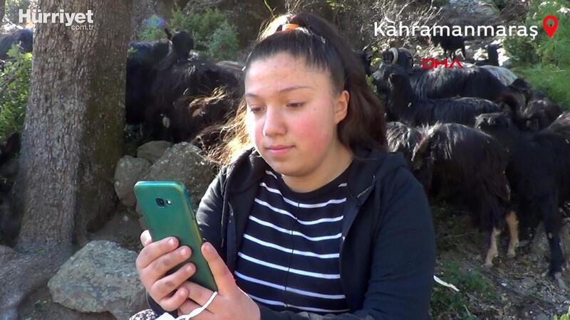Keçilerini otlatırken canlı derse giriyor