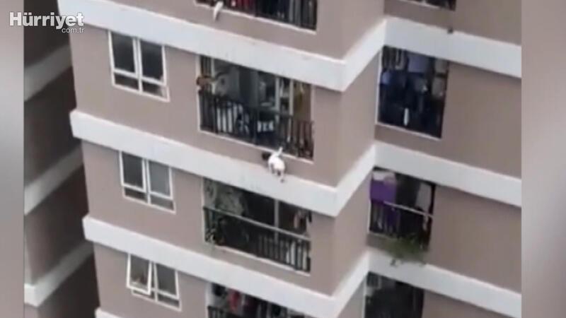 Vietnam'da 12'nci kattan düşen küçük kızı kurye kurtardı