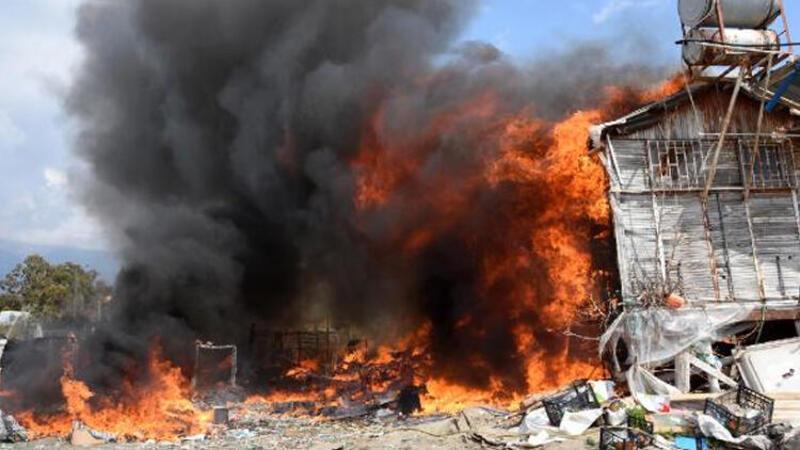 Yemek yapmak için yakılan ateş barakaya sıçradı, çok sayıda hayvan telef oldu