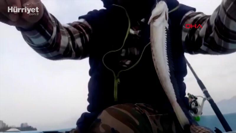 Zehirli trakonya balığına karşı 'ayakkabı giyin' uyarısı