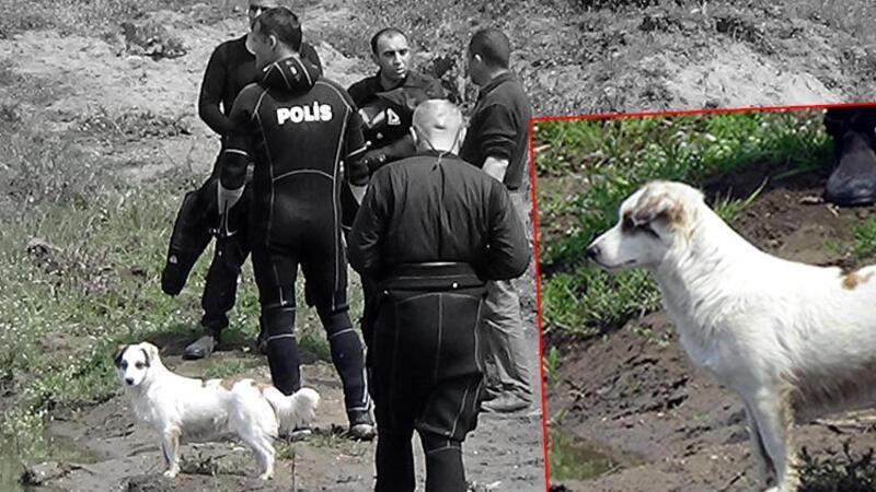 Edirne'de endişeli bekleyiş sürüyor... Beslediği köpeği bir an olsun ayrılmadı