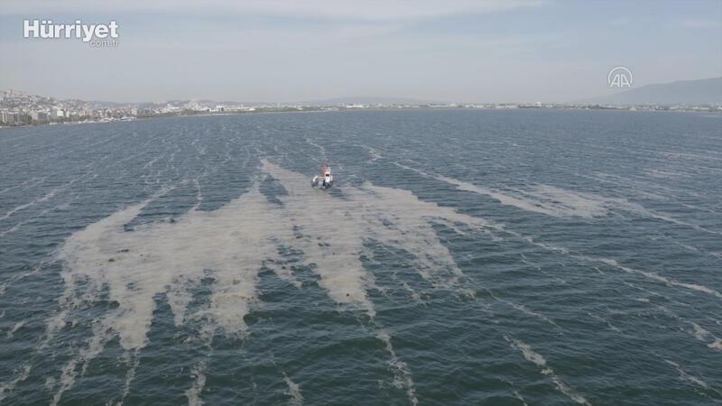İzmit Körfezi'nden 100 ton deniz salyası temizlendi