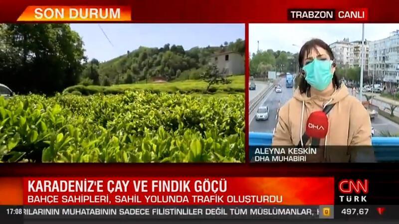 Karadeniz'de çay ve fındık göçü
