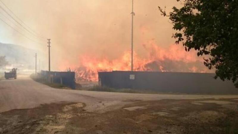 Afyonkarahisar'daki biyokütle enerji tesisinde yangın