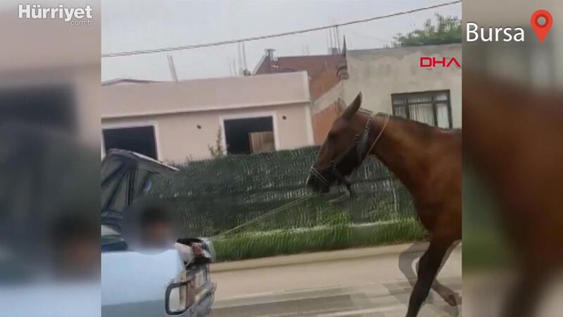 Bursa'da otomobilin bagajındaki çocuğun ipe bağlı atı koşturduğu anlar kamerada