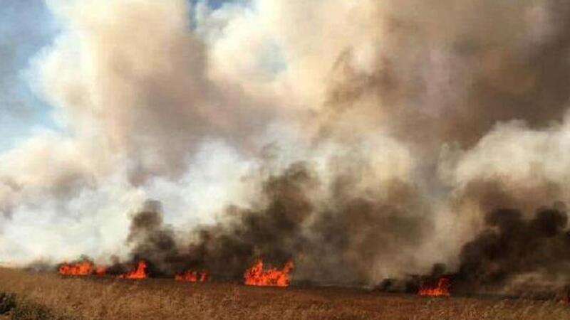 Gaziantep Nurdağı'nda 35 dönüm ekili buğday yandı