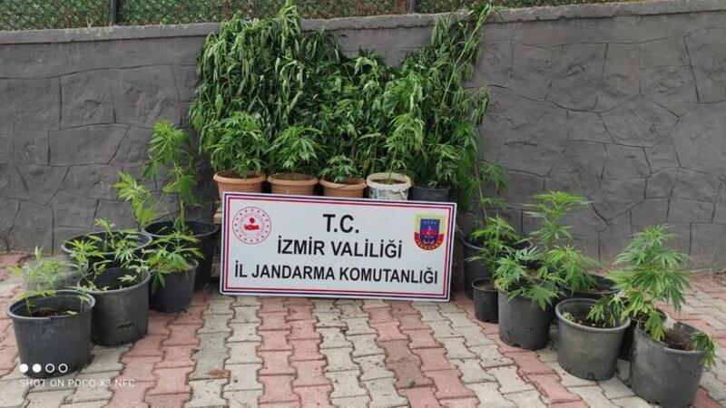 İzmir'de uyuşturucu tacirlerine operasyonda 11 gözaltı