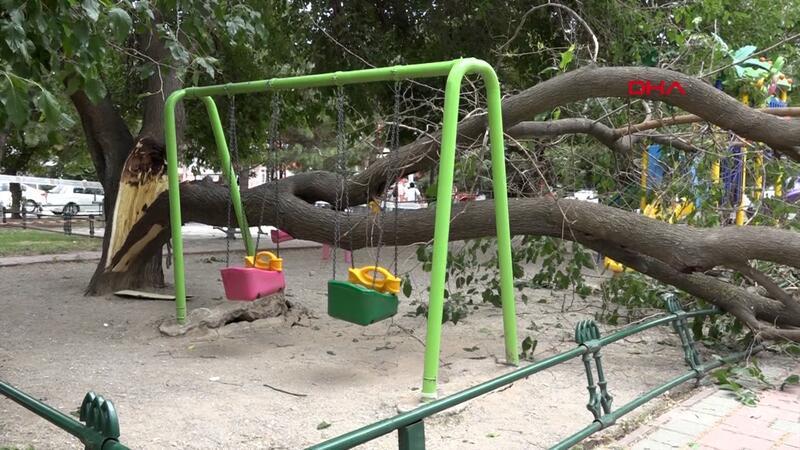 Çocuk parkındaki dut ağacı salıncakların üzerine devrildi