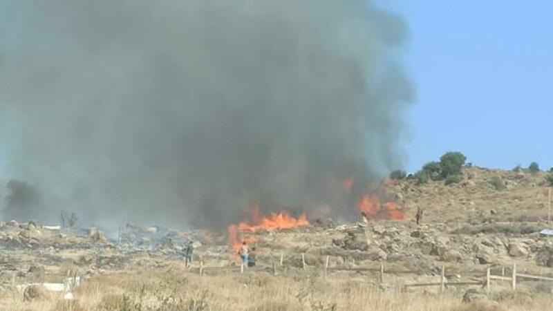 Dikili'de makilik alanda yangın