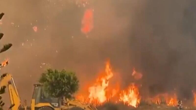 Massive forest fire engulfs Mediterranean district