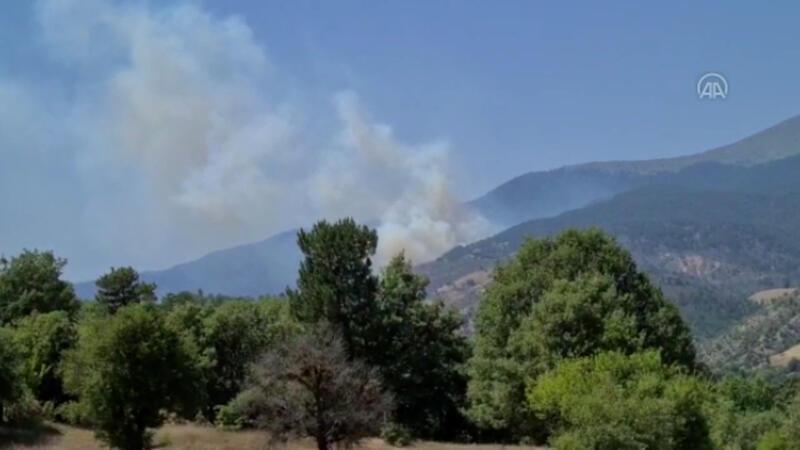 Kütahya'nın Emet ilçesinde orman yangını