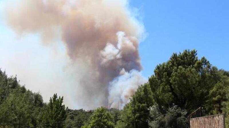 Adana'da 4 ilçedeki 6 noktada orman yangını