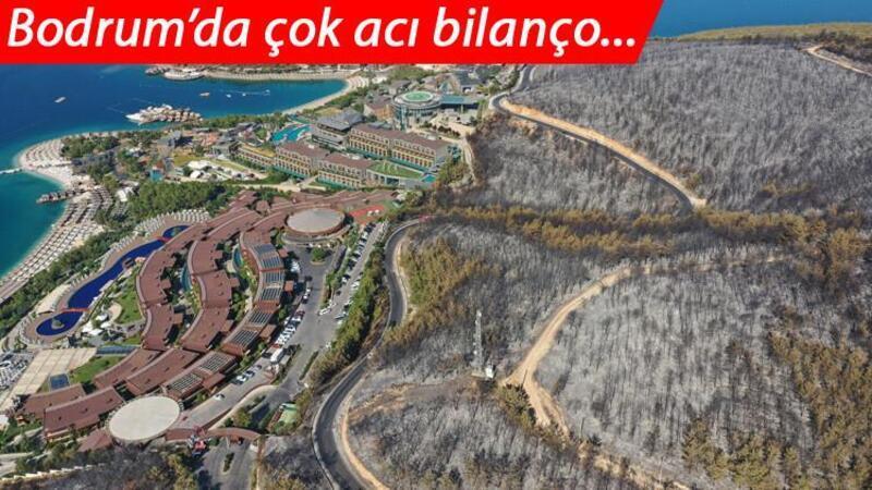 Milas'taki yangında zarar gören 80 hektarlık ormanlık alan havadan görüntülendi