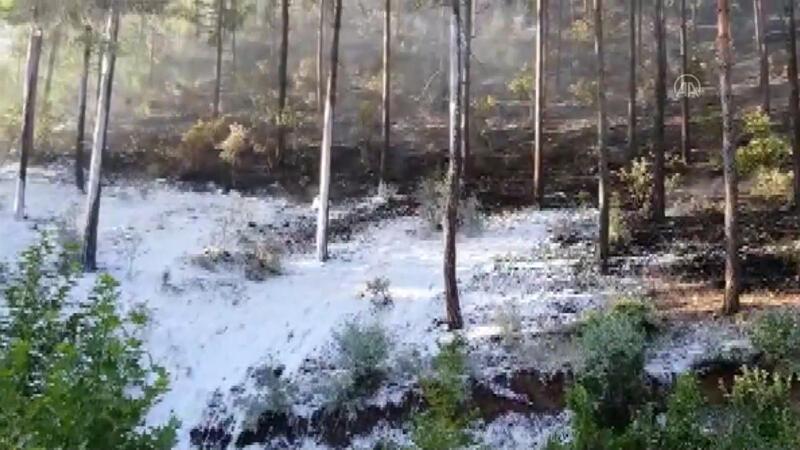 Adana Feke'de çıkan orman yangını kontrol altına alındı