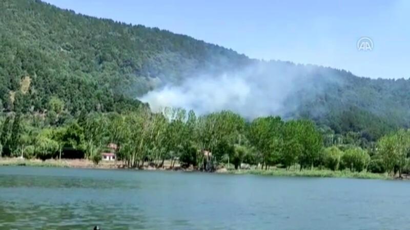 İzmir Ödemiş'te orman yangını çıktı