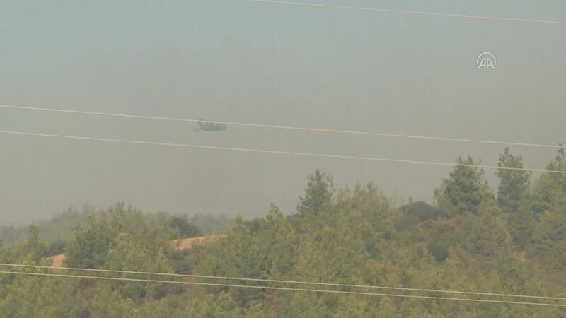 Adana Aladağ'daki orman yangınına müdahale ediliyor