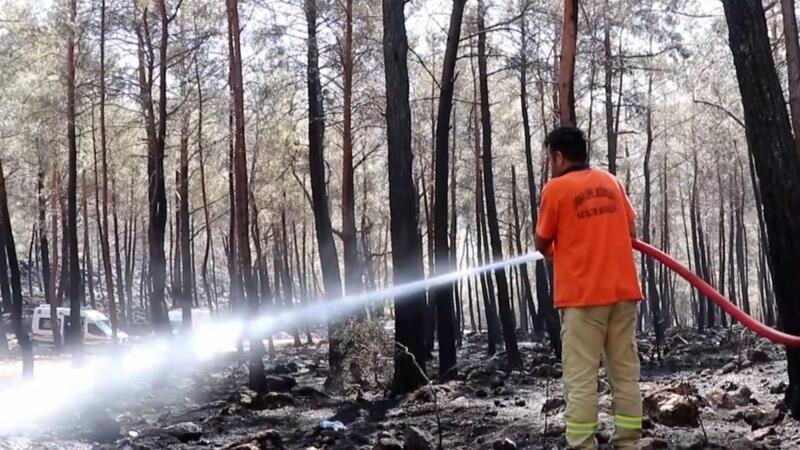 Muğla'nın Fethiye ilçesindeki orman yangını kontrol altına alındı