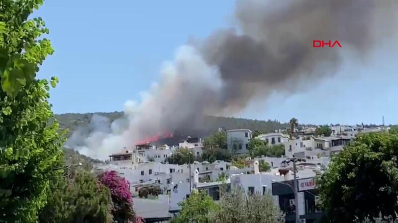 Bodrum Kumbahçe mahallesinde ormanlık alanda yangın